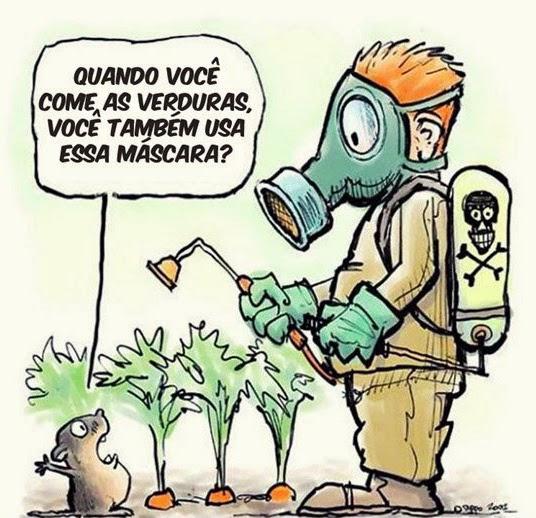 """""""Centrar na produção de alimentos saudáveis"""""""