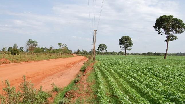 En Paraguay, el sector sojero usa herbicidas más tóxicos