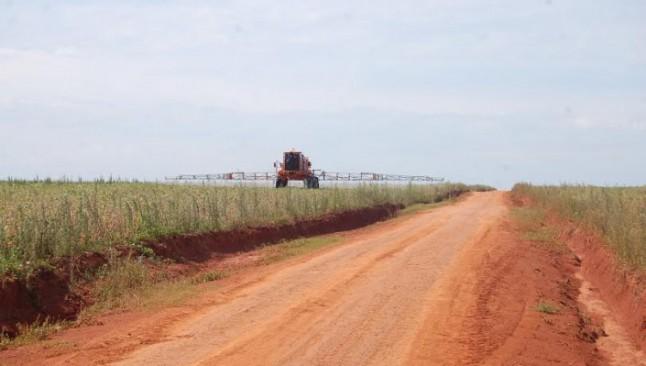Paraguay: se disparó la importación de herbicidas más tóxicos en 2015