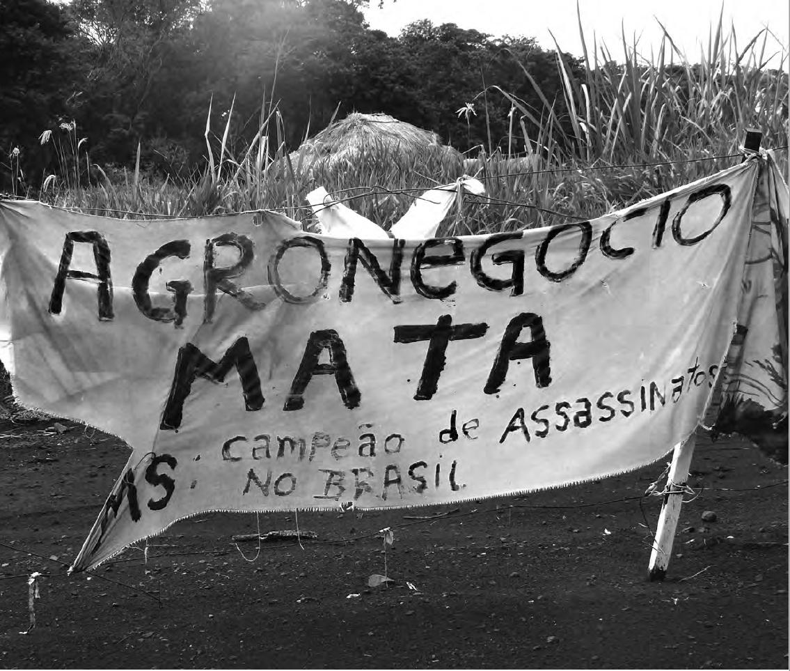 Informe expõe violência contra os Povos Indígenas no Brasil