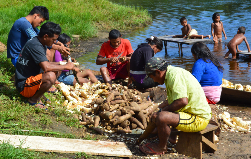 O Bem Viver Indígena e o futuro da humanidade