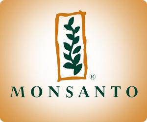 """""""Monsanto vergiftet die Welt"""""""