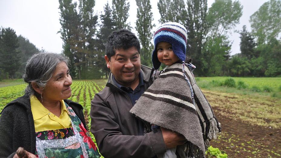 Mapuche kämpfen um ihre Rechte