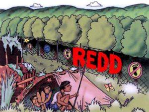 25-REDD-400x300