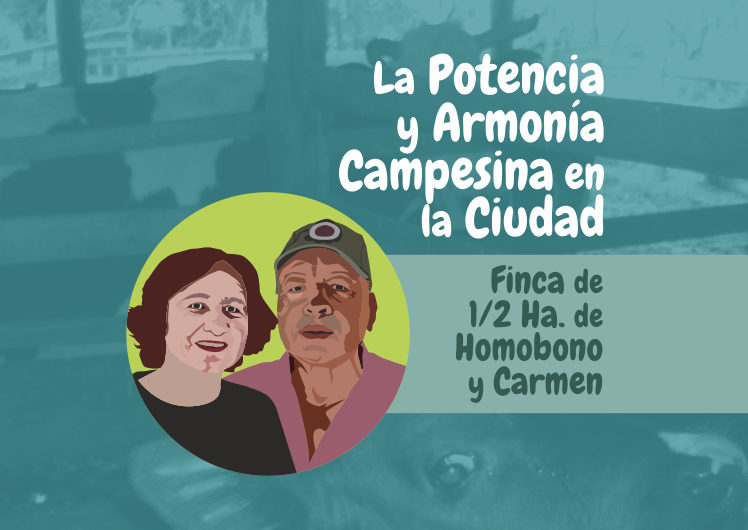 La Potencia y Armonía Campesina en la Ciudad